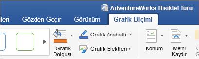 Seçili bir SVG görüntüsü şerit üzerinde grafik biçimi sekmesi