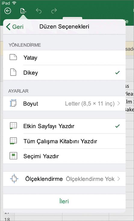 iOS için Excel'deki yazdırma ayarları iletişim kutusu, çalışma sayfanızın nasıl yazdırılacağını yapılandırmanızı sağlar.