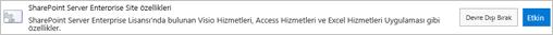 SharePoint Server Enterprise sitesi özellikleri etkinleştirme