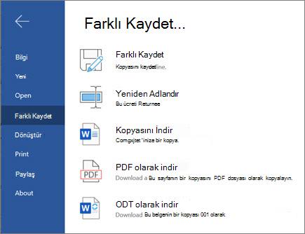 Web için Word-Kaydet seçenekleri