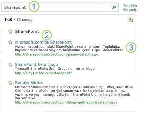 Arama sonuçları sayfasının en üstünde SharePoint Server için üç En İyi Sonuç görünüyor