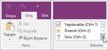 OneNote 2016'daki etiket listesinin ekran görüntüsü.