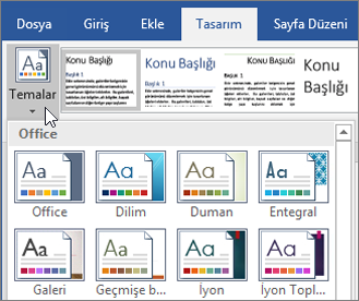 Office 365 Word Temaları