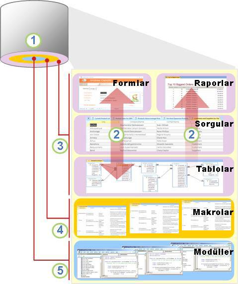 Access bileşenleri ve kullanıcılar genel bakış