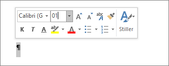 Yazı tipi boyutunu 1'e ayarlama