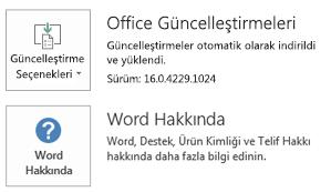 Office, Tıkla-Çalıştır teknolojisi kullanılarak yüklendiğinde Uygulama ve Güncelleştirme bilgisi bu şekilde görünür.