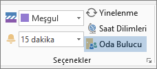 Outlook 2013'teki Oda Bulucu düğmesi