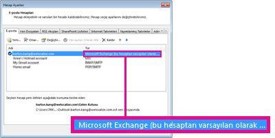 Hesap Ayarları iletişim kutusunda göründüğü haliyle Microsoft Exchange hesabı