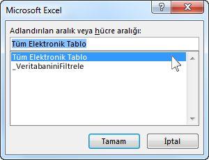 Word'deki Microsoft Excel iletişim kutusu