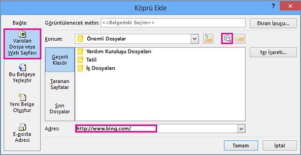 Seçili web sitesine bağlantı ekleme seçeneğinin belirlendiği iletişim kutusu