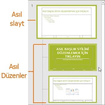 PowerPoint Asıl Slayt görünümünde düzenleriyle birlikte Asıl Slayt