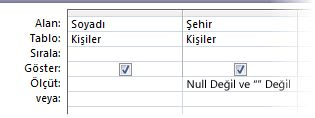 Şehir alanı null veya boş olmayan ölçüt içeren sorgu tasarımcısı.