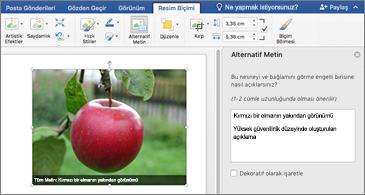 Görüntü içeren Word belgesi ve sağ tarafta Alternatif Metin bölmesi