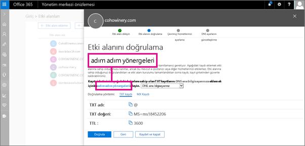 Doğrulama sayfasında, DNS ana bilgisayarınızda bir TXT kaydı eklemeye yönelik yönergeleri izleyin