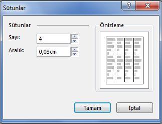Publisher'daki Metin Kutusu Araçları Daha Fazla Sütun seçeneğinin ekran görüntüsü.