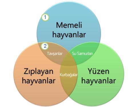 Bir Venn diyagramı