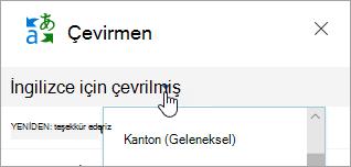Çeviri penceresinin ekran görüntüsü