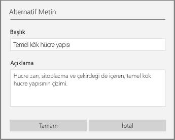 Windows 10 için OneNote'ta alternatif metin eklemeye yönelik alternatif metin iletişim kutusu.