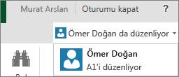 Excel Online'da birden çok yazar