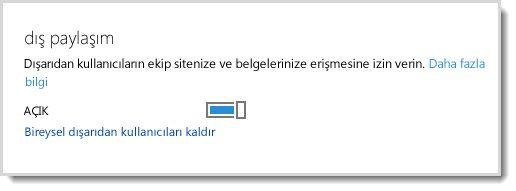 Dış kullanıcıların ekip sitenize ve belgelerinize erişimine izin vermek için kullanılan açma/kapatma denetimini gösteren resim.