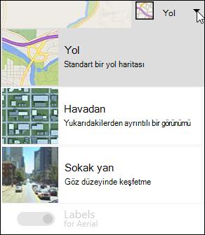 Bing Haritası Web Bölümü harita türü