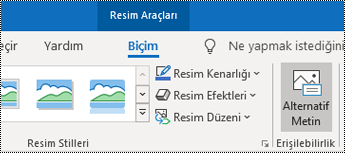 Windows için Outlook'ta şeritteki Alternatif Metin düğmesi.