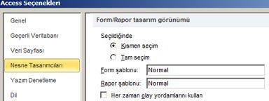 Formları gösterir ve Rapor Tasarımcısı seçenekleri