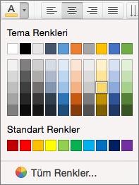 Yazı tipi rengi seçme