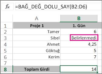 Seçilen aralıkla Bağ_değ_dolu_say işlevinin kullanılması