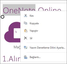 Dokunmatik cihazlarda OneNote Online bağlam menüsü