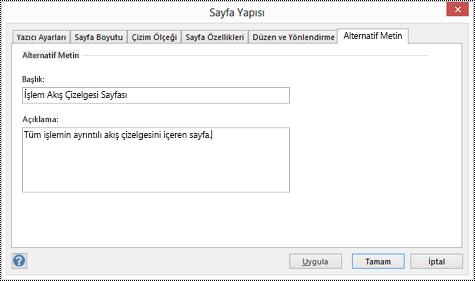 Visio'da bir sayfa için alternatif metin iletişim kutusu.
