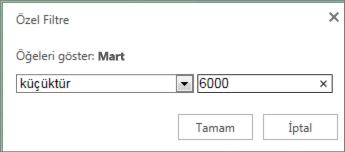 belirli bir kriterin altındaki değerleri göstermek için özel bir filtre uygulama