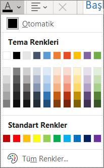 Giriş menüsünde yazı tipi rengi seçeneğinin ekran görüntüsü.