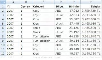 PivotTable raporunda kullanılan veriler