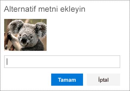 Web üzerinde Outlook'ta resimler için alternatif metin ekleyin.