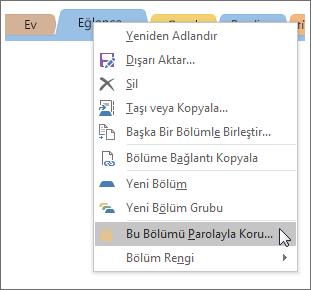 OneNote 2016'da bir bölümün parolayla nasıl korunduğunu gösteren ekran görüntüsü.