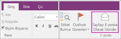 OneNote 2016'da E-posta Sayfası düğmesinin ekran görüntüsü.