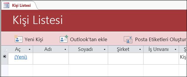 Access Kişileri veritabanı şablonundaki kişi listesi formu