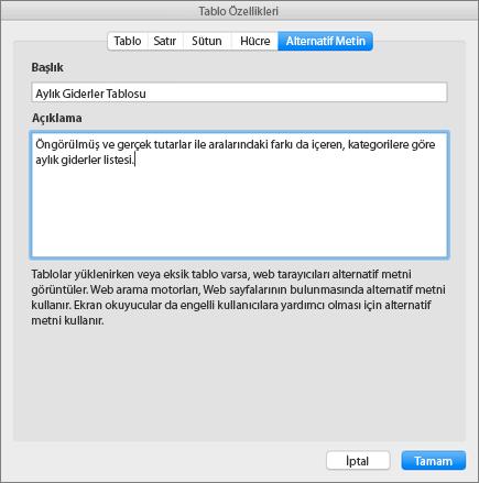 Tablo Özellikleri iletişim kutusunun Alternatif Metin sekmesinde seçili tablonun açıklandığı ekran görüntüsü