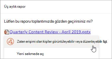 OneDrive dosyası bağlantısının ekran görüntüsü
