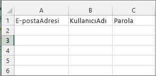 Excel geçiş dosyasındaki hücre başlıkları.