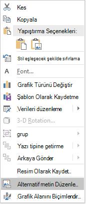 PowerPoint Win32 grafik için alternatif metin menüsü