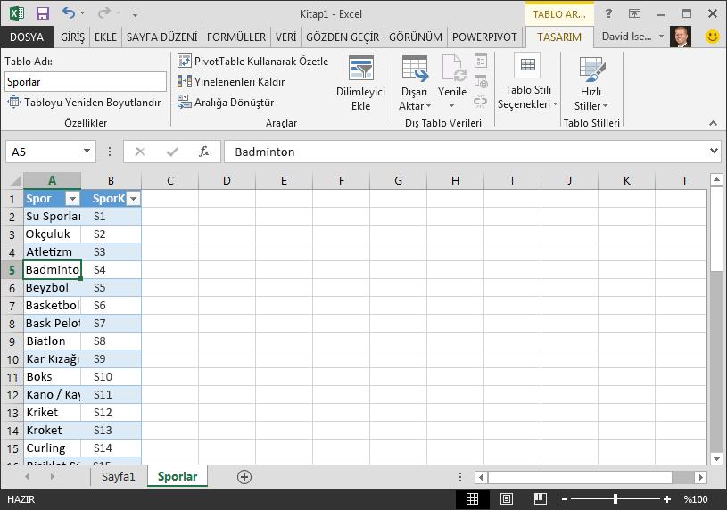 Excel'de bir tabloyu adlandırma