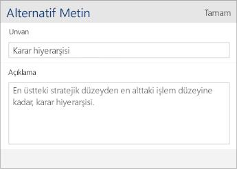 Word Mobile'da Başlık ve Açıklama alanlarını içeren alternatif metin iletişim kutusunun ekran görüntüsü.