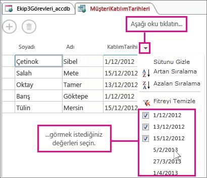 Access uygulamasındaki sorguda sütun filtreleme