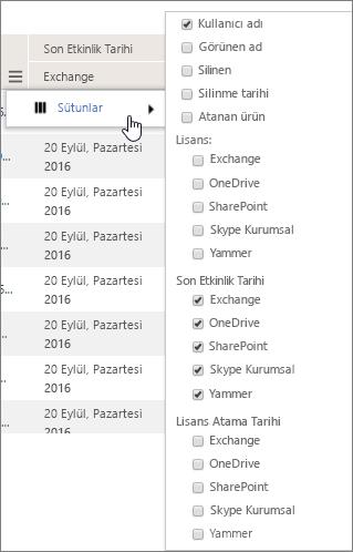 Kullanıcı düzeyi filtresi seçenekleri