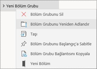 Windows 10 uygulaması için OneNote'ta bölüm gruplarını yeniden adlandırma