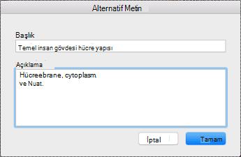 Mac Sierra için Alternatif metin iletişim kutusu.