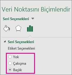 Treemap grafiği için seçenekleri gösteren Veri Etiketini Biçimlendir görev paneli