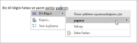 Office 365 Yazım ve Dil Bilgisi örneği